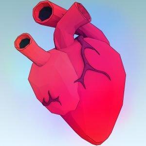 heart-1164567_1920